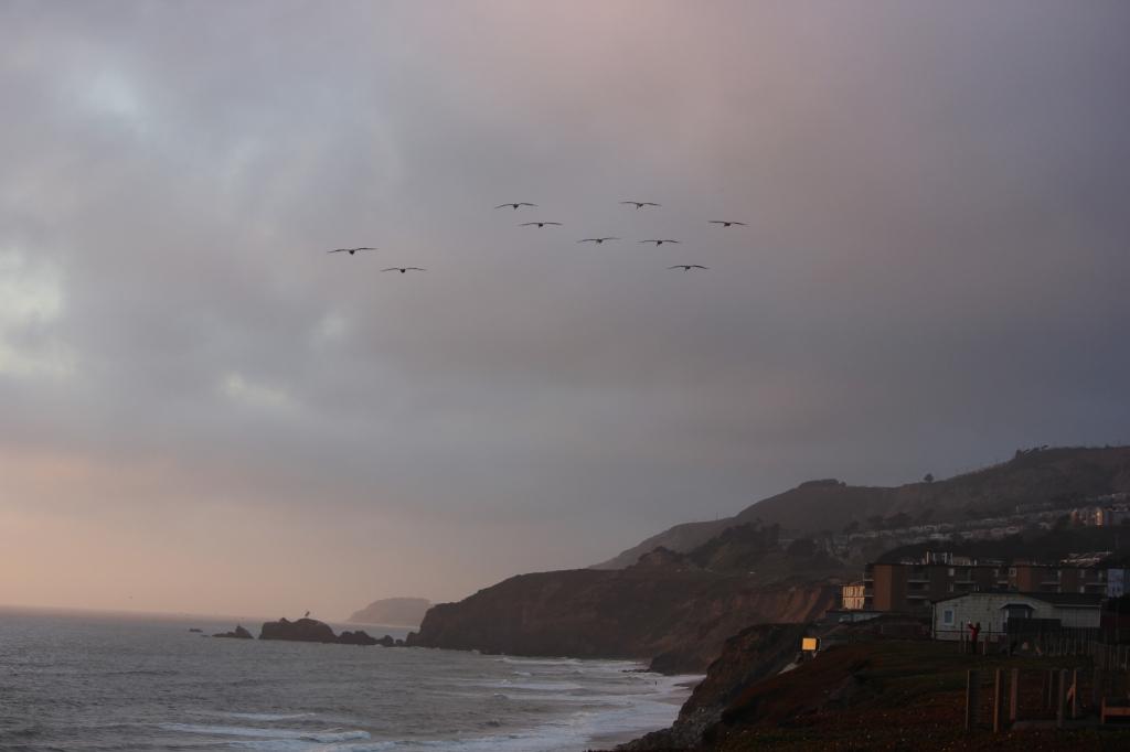 San Francisco RV ResortIMG_9277