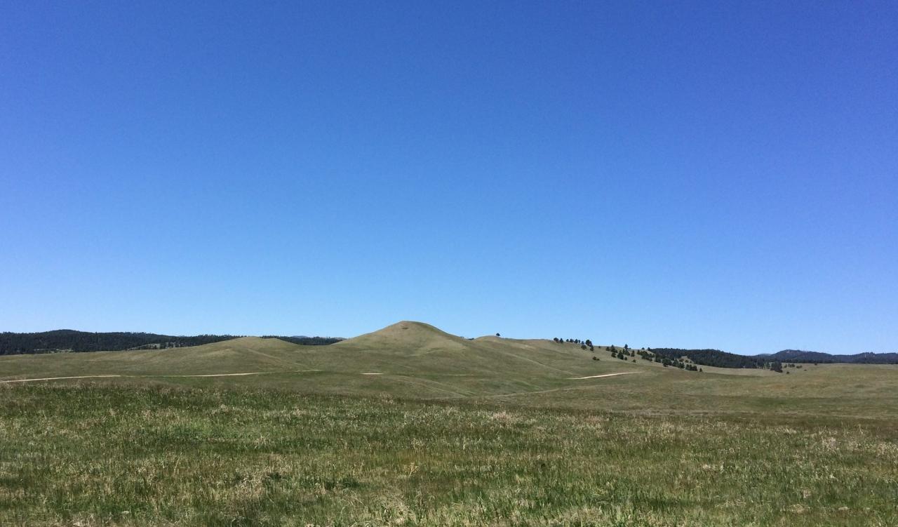black-hills13