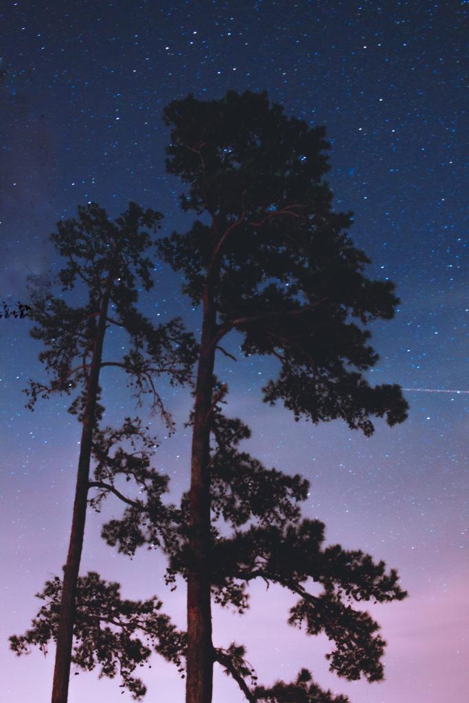 The night sky over Lake Ouachita at Lake Ouachita State Park in Arkansas