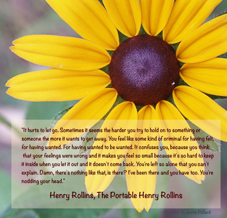 Henry Rollins Quote about the hurt you feel when you let go.