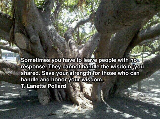 Tree with quote about not responding to people who do not get your wisdom.