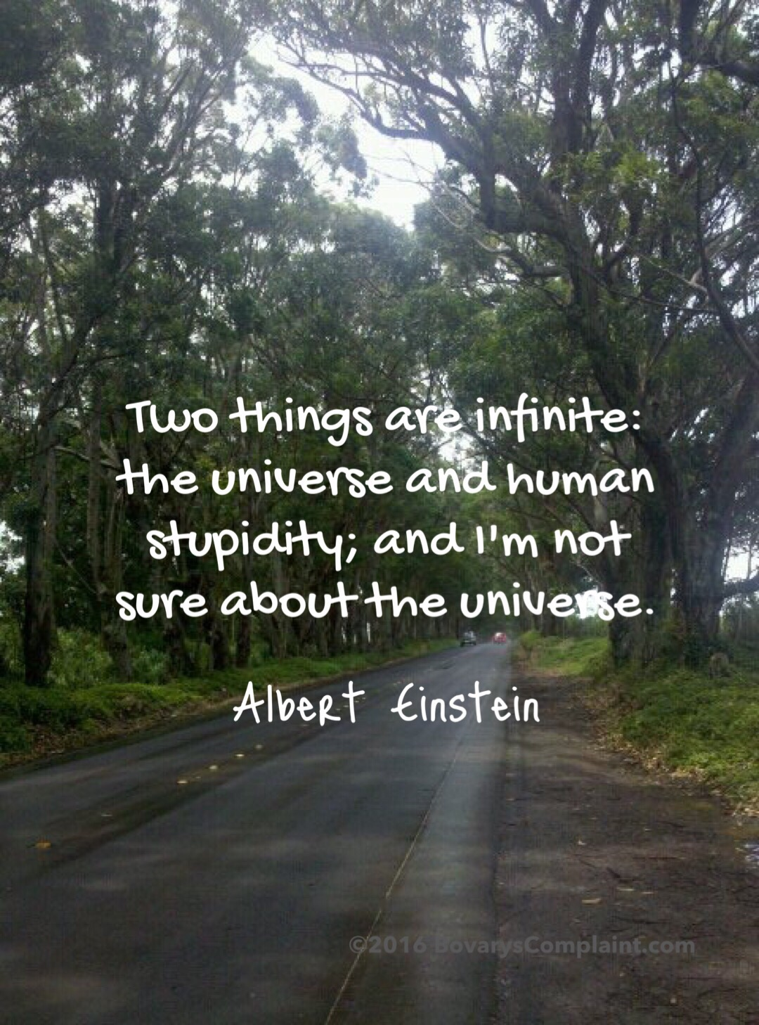 Einstein, the Universe, and Human Stupidity