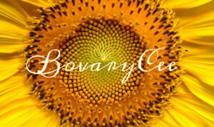 BovaryCee signature on a sunflower