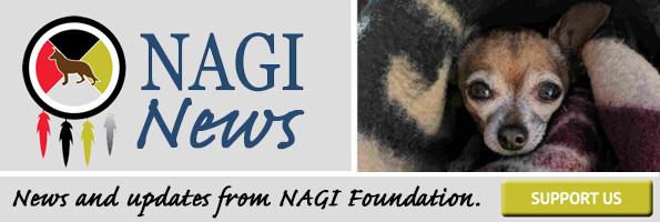 NAGI News – August 2018