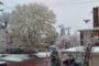 Winter Wonderland: Snowfall Hits Butler In April