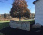 Tree Down-Road Closed-Clinton Twp.