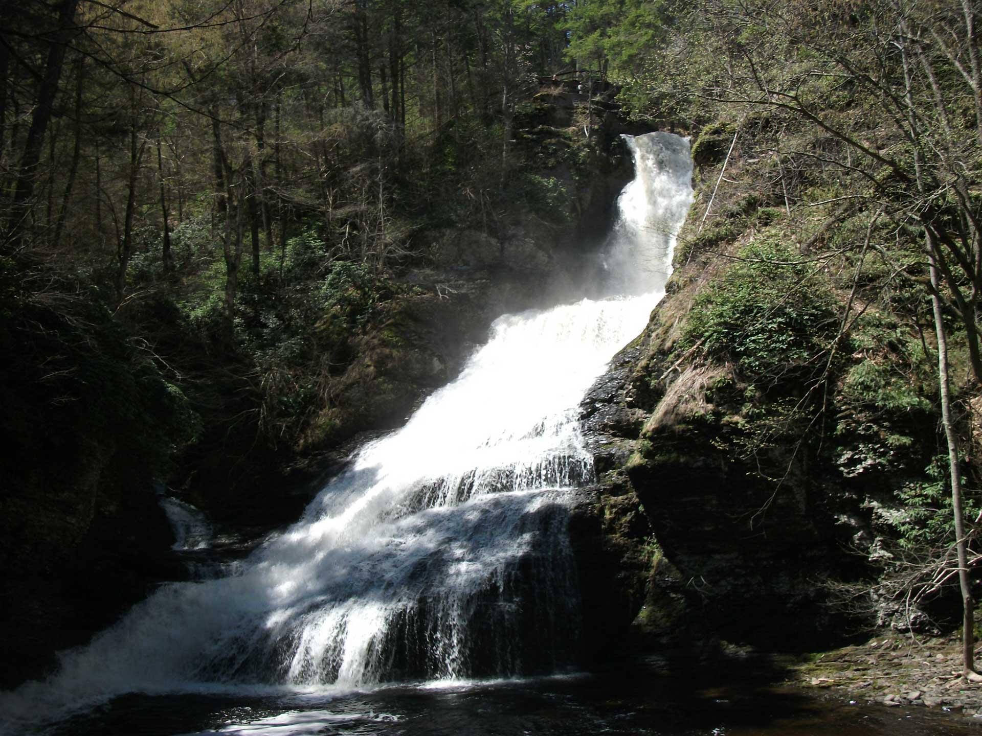 water flowing down dingmans falls in the woods