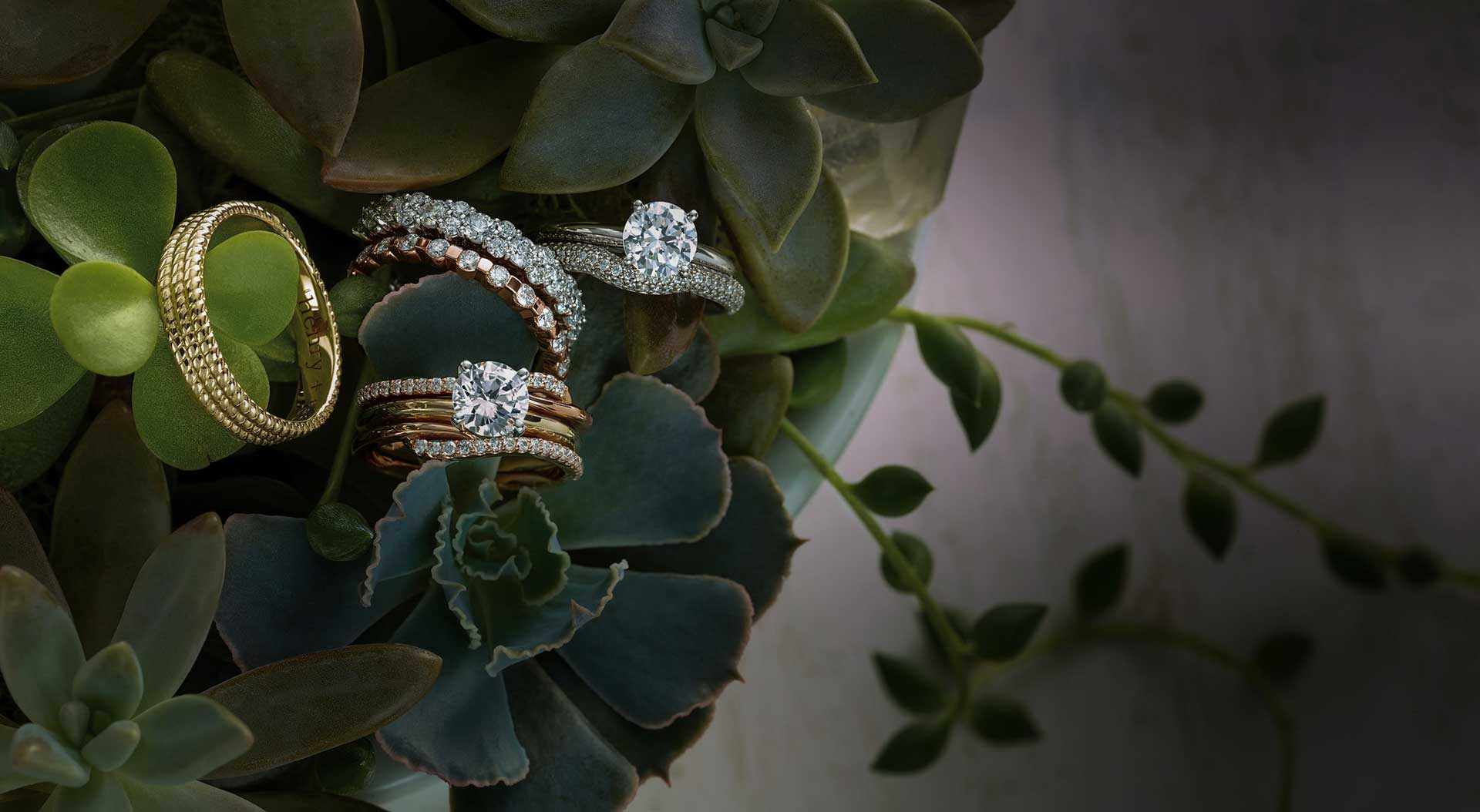 gold and silver wedding bands and rings with diamonds sitting on succulents