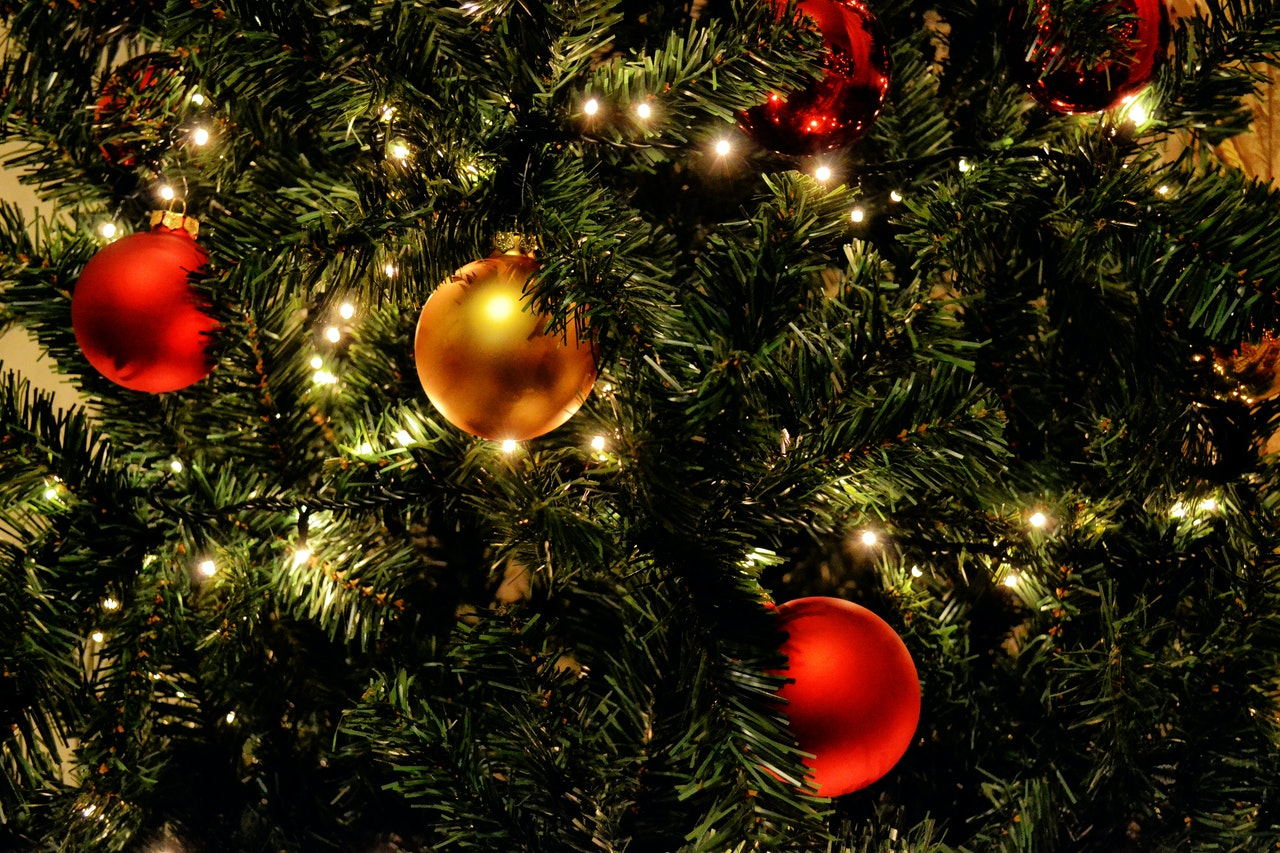 close up of a christmas tree with lights and red and gold ornaments