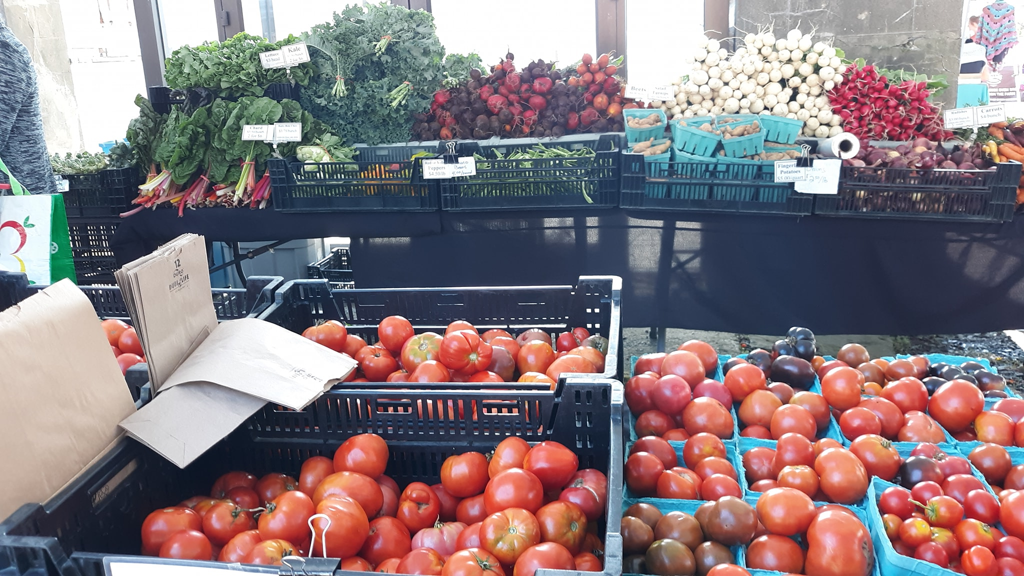 a table of fresh vegetable produce