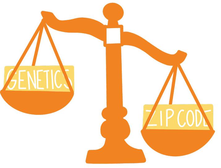 Bridging the Gap in Healthcare Disparities