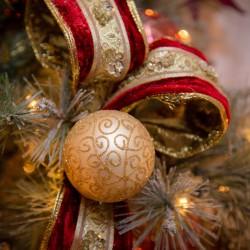 medford, oregon, photography, Christmas