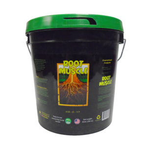 Root Muscle – 6lbs