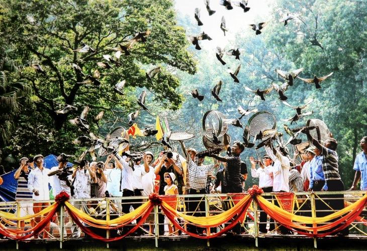 Floating village & Bird Sanctuary Tour