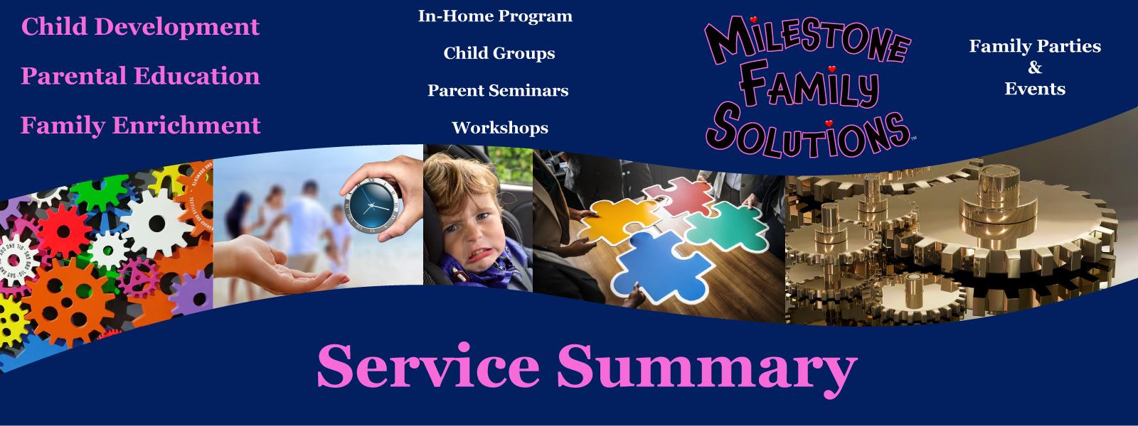 service summary header