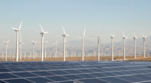 PROJECT REVIEW: TOP US RENEWABLE DEVELOPERS