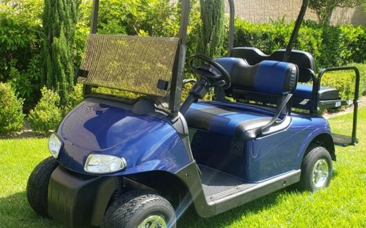 2014 Ezgo Rxv Electric 48 Volt Golf Cart – Blue