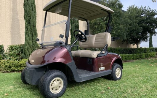 Ezgo Rxv 2 Passenger Golf Cart Straight Off The Course