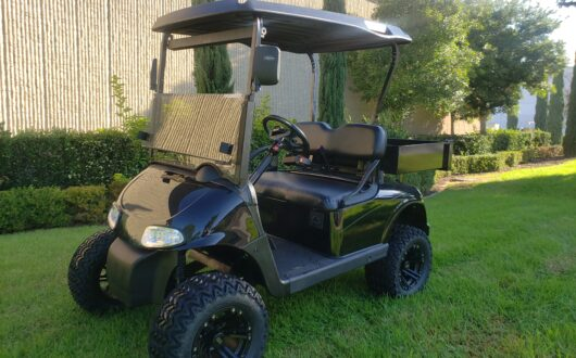 Ezgo Electric Rxv 2 Passenger Golf Cart with Cargo Box