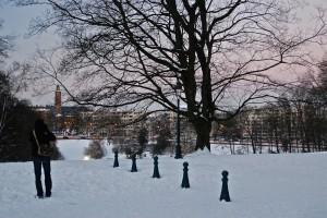 Bruselas nevada desde el Woluwepark