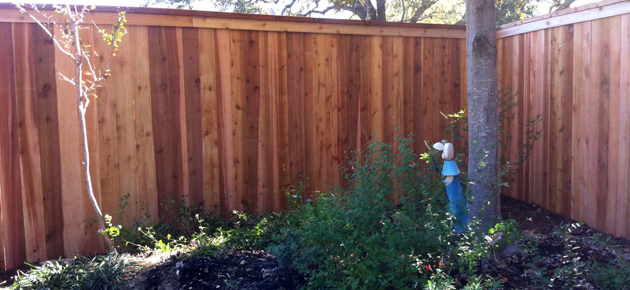 Western Red Cedar Privacy Fencing