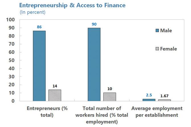 problems faced by women entrepreneurs