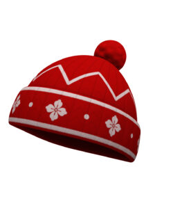 Knitted Hat 3d model