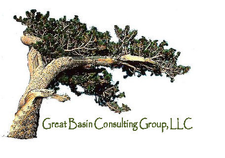 Great Basin Consulting Group, LLC