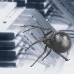 Spider Attaching Bonding Wires on Multi-Chip Stacks