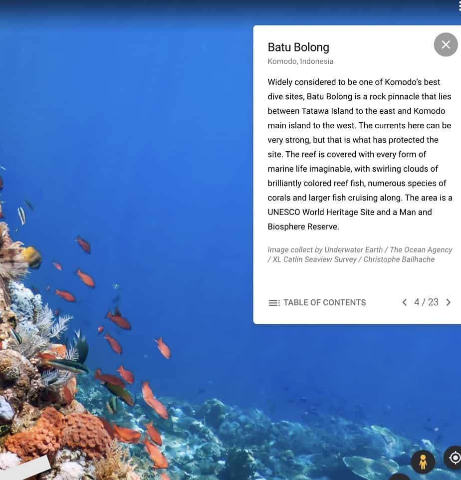 "Batu Bolong Dive Site, Komodo, Indonesia on Google Earth ""The World's Ocean"""