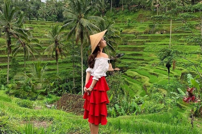 Tegalalang Rice Terrace, Monkey Forest, Temples, best private tour in Bali