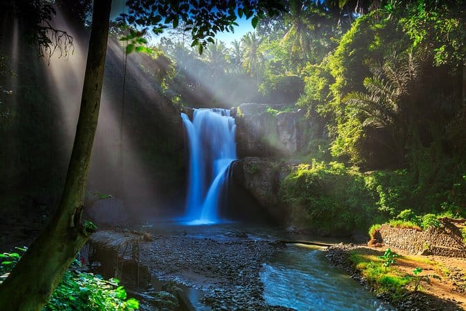 Private tour guide in Bali took us to waterfalls, monkey forest and rice terraces