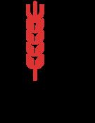 Minko Design Logo