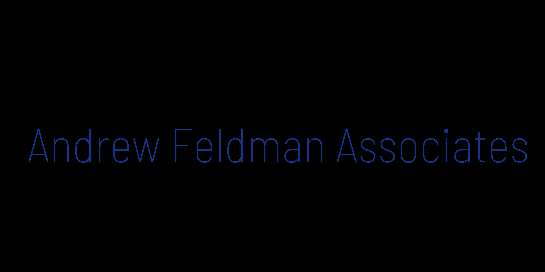Andrew Feldman Associates