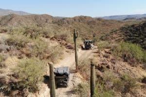explore the desert