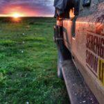 serengeti show live testimonial for fresh visual production