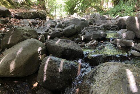 Creek (6)