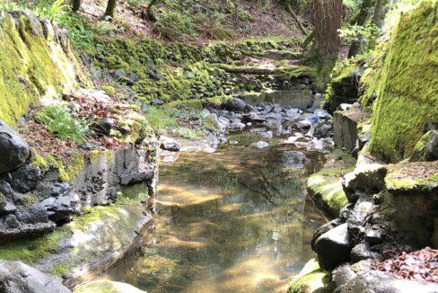 creek 12