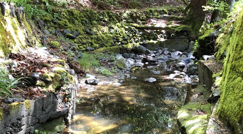 creek 13