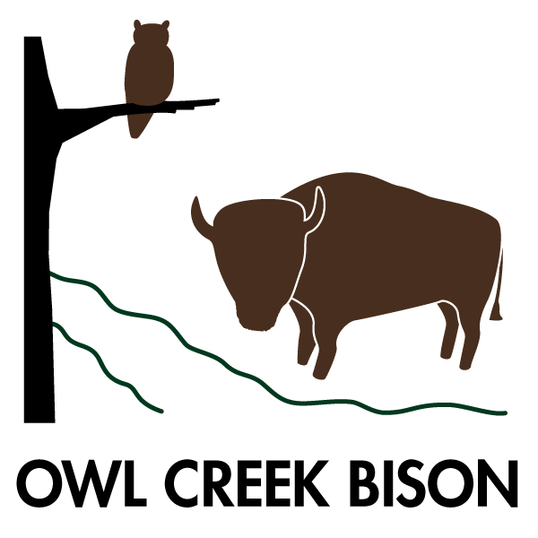 Owl Creek Bison