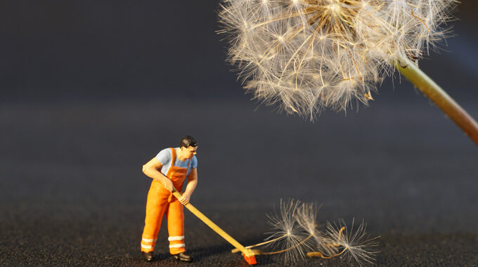 Spring Cleaning Your Team