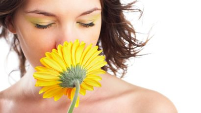 Scent works as eyesight works
