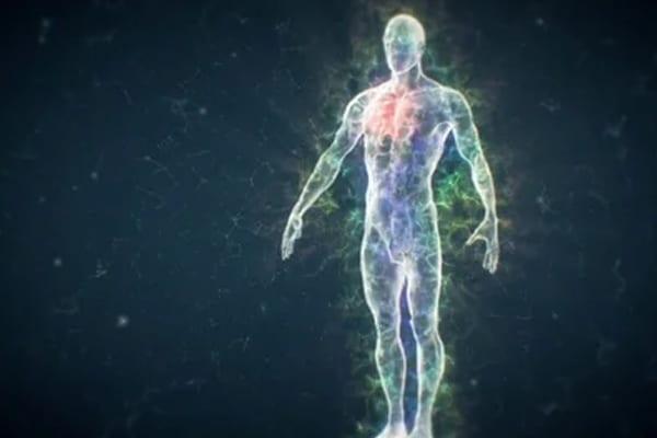 LFY 24 | Emotional Freedom Technique