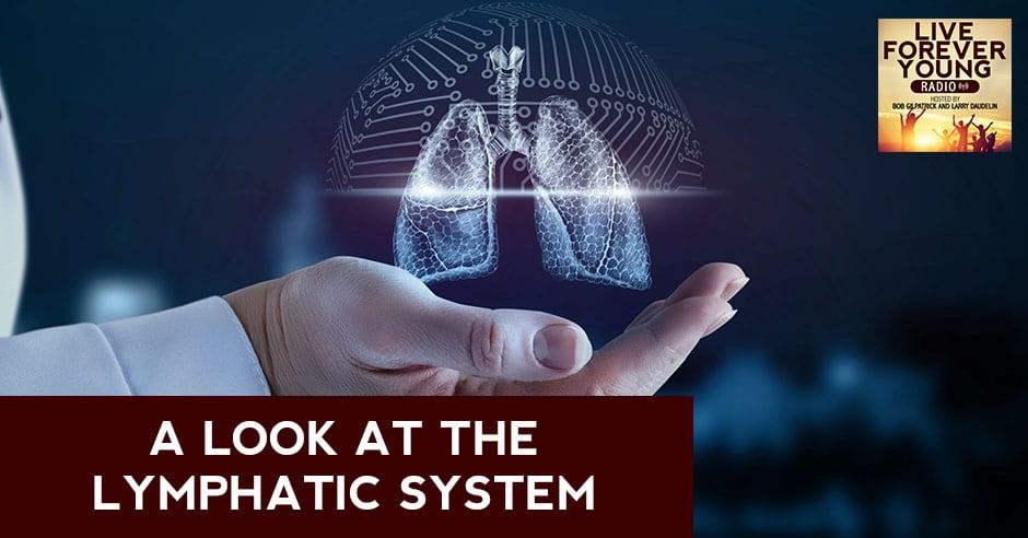LFY 25   Lympathic System