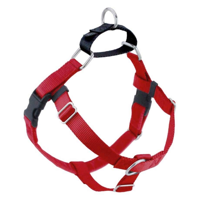 Freedom No-Pull Harness with Training Leash raspberry