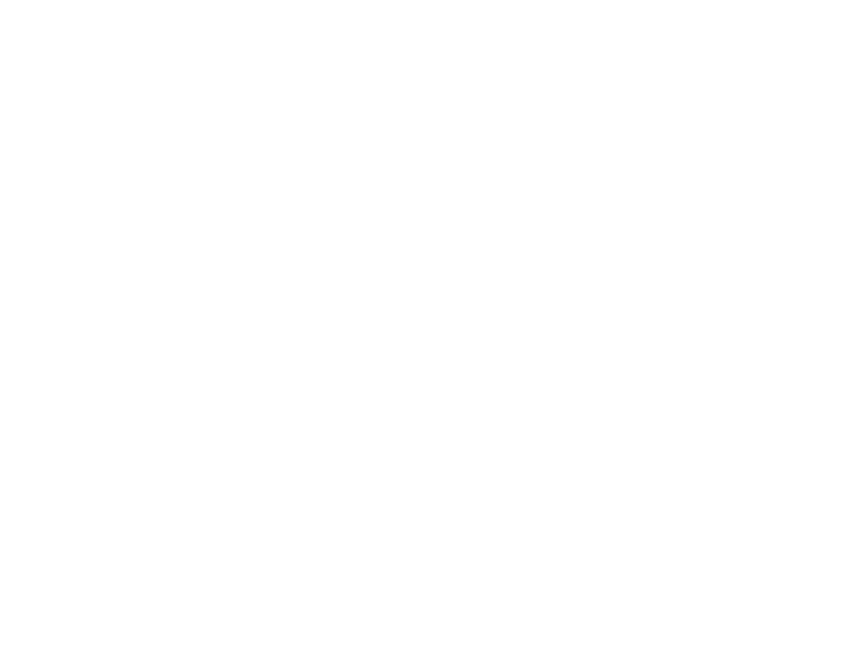 Alpine Dogs | Dog Training, Group Classes and Workshops in Whistler, BC