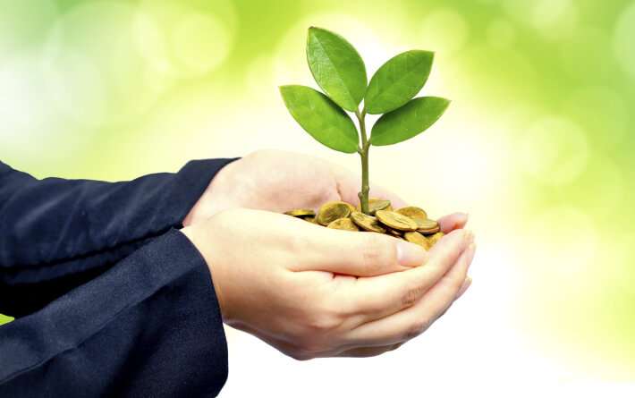 wealth sustainability