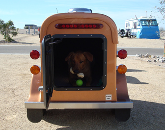 A cute dog inside a brown cargo trailer