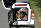 A white pet trailer