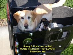A dog inside a pet trailer